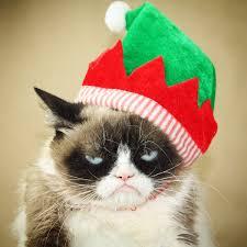grumpy cat christmas hat. Perfect Grumpy KelGirl On Twitter  To Grumpy Cat Christmas Hat I
