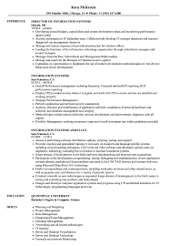 Computer Information Systems Resume Sample Information Systems Resume Samples Velvet Jobs 10