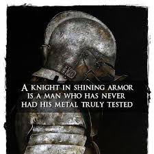 Image result for knight in shining armour