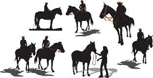 4 H Equine Program Grant County Washington State University