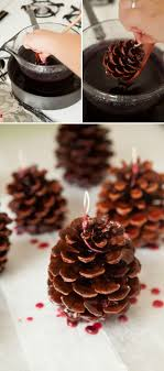 Pine Cone Candles Learn How To Make Your Own Pinecone Fire Starters