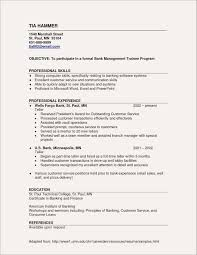 Elementary Teaching Resume Template Sample Elementary Teaching