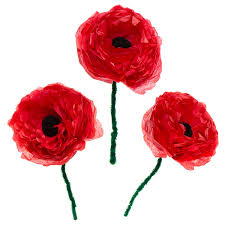 Large Tissue Paper Flower Large Tissue Paper Poppies Free Craft Ideas Baker Ross