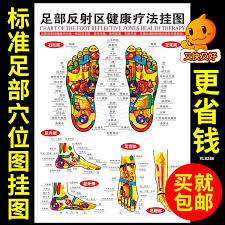 Acupuncture Foot Chart Chinese Museum Of The Human Body Meridian Acupuncture Point