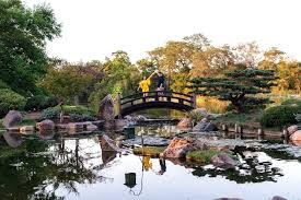 osaka garden couple on bridge at garden on south side osaka lucky garden shirley street winthrop osaka garden