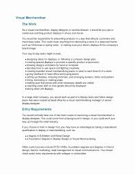 Visual Merchandiser Resume Resume Sample for Merchandiser Awesome Ideas Collection Visual 42