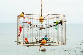 birdcage lighting. zoom birdcage lighting d