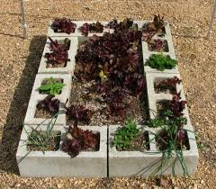 Small Picture 96 best Cinder block gardens images on Pinterest Cinder block