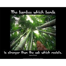 The Bamboo Which Bends