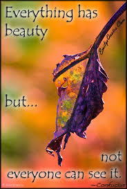 Everything Has Beauty Quotes Best Of Everything Has Beauty But Not Everyone Can See It Popular