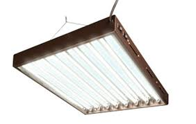 Hydrofarm Designer T5 Agrobrite Designer T5 Fluorescent Light 4 X 8 W Bulbs