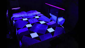 Can You See Bed Bugs With A Black Light Bed Blacklight Youtube