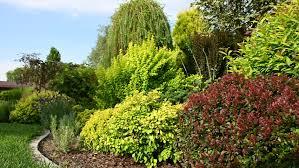 private garden landscape stock footage