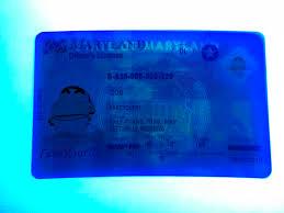 Id Maryland Scannable Premium - Buy Fake We Make Ids