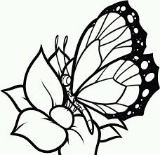 Small Picture Free Printable Butterfly Coloring Pages For Kids for Printable