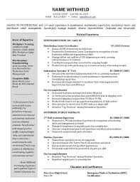 Warehouse Operative Resume Free Resume Example And Writing Download