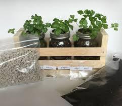 Kitchen Herb Garden Kit Buy Kitchen Herb Garden Kit
