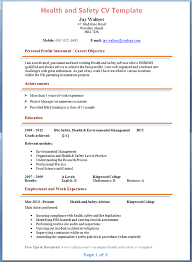 Environmental Health Safety Engineer Sample Resume Simple Health And Safety CV Template Tips And Download CV Plaza