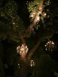 first stop the chandelier tree 2811 west silver lake drive i love silver lake and it s close to home i always forget that i ll be there more often in