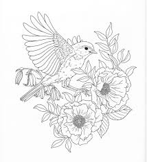 dover nature coloring books stunning pages dover nature coloring books stunning pages