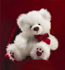 teddy bear wallpapers free group 68