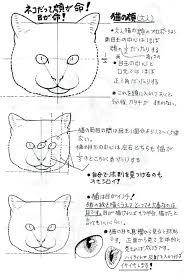 猫の描き方とコツ講座東京アートデザ 資料イラスト資料2019