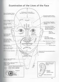 Ayurvedic Facial Diagnosis What Are The Lines On Your Face