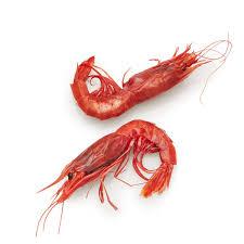 Order Wild Carabineros Shrimp ...