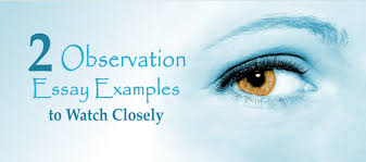 observation essay examples to watch closely essay writing