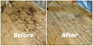 how to remove pet urine smell from wood floors