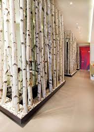 Small Picture white birch room divider Google Search living room Pinterest