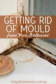 getting rid of mold in bathroom. Clove Oil Getting Rid Of Mold In Bathroom G