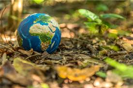 UVI Partners with Government Agencies to Celebrate Earth Day 2021