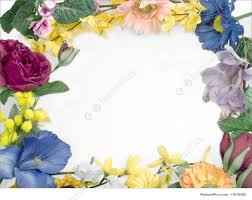 frame design flower. flower petal background, floral border design, borders and frames, frames: different frame design e