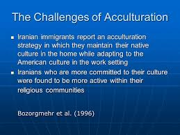 intra cultural differences among ians and ian americans  10 the challenges
