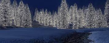 Dual Monitor Wallpaper Winter