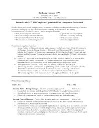 Formidable Sample Resume For Audit Position For Your Internal