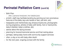 Perinatal Hospice Birth Plan Applied Ethics Rev Kevin Mcgovern Ppt Download