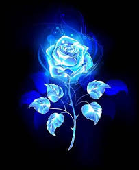 Find & download free graphic resources for blue background. Blooming Abstract Rose From Blue Flame On Black Background Blue Roses Wallpaper Black And Blue Wallpaper Blue Roses