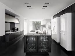 Contemporary Style Kitchen Cabinets Gorgeous Contemporary Style Wooden Kitchen SieMatic PURE SE 48 R By SieMatic