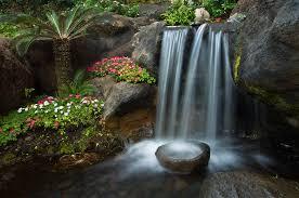zen gardens gardensan