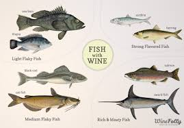 Types Of Bass Fish Chart Pairing Wine With Fish Wine Folly