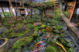 Japanese Garden Rock Peace Water Fish Tree Flower Statue Koi Japan Desktop  Backgrounds