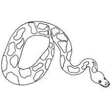 Small Picture Top 25 Free Printable Snake Coloring Pages Online