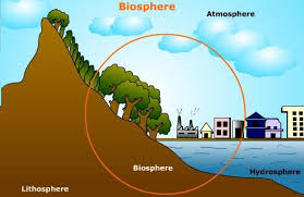 Detailed Illustration Of Biosphere With Diagram Earth