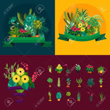 indoor home office plants royalty. Illustration Of Houseplants, Indoor And Office Plants In Pot. Home For Garden Or Royalty