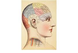 The Brain is Wider Than the Sky Bryan Appleyard - 7377008-1