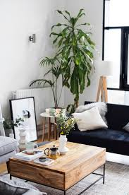 Home Plant Decor And Best Living Room Plants Ideas Trends Picture