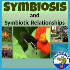 symbiotic relationships symbiosis symbiotic relationships powerpoint by happyedugator tpt
