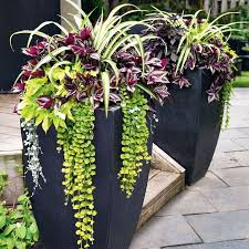 Patio Pots and Planters Beautiful with Best 25 Patio Planters Ideas On  Pinterest Plastic Planter Boxes
